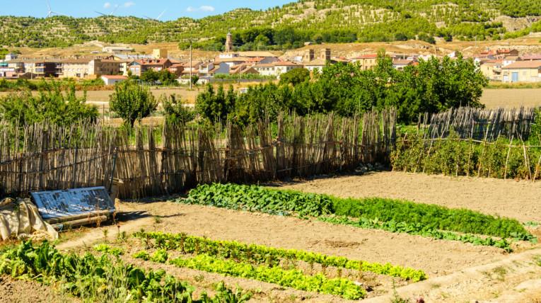 Valtierra planes de fin de semana rutas y senderos para los amantes de la naturaleza en España en el norte